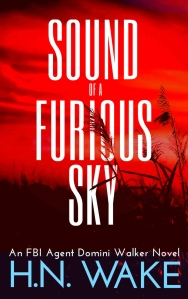 Furious Sky
